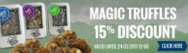 15% Discount Magic Truffles